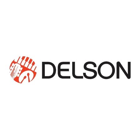 Logo Delson