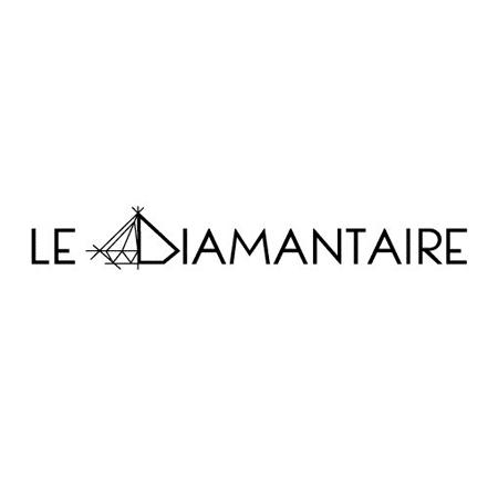 Logo Le Diamantaire
