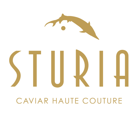 Logo Sturia