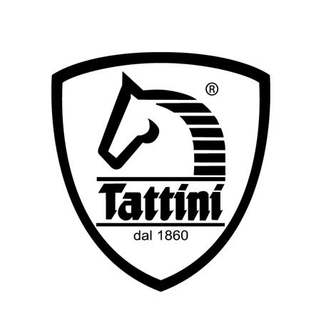 Logo Tattini