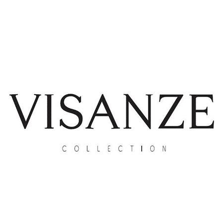 Logo Visanze